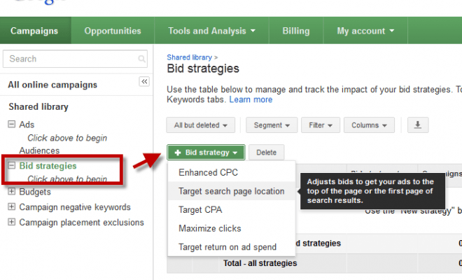 Google Adwords Bid Strategy in Search Network Campaign