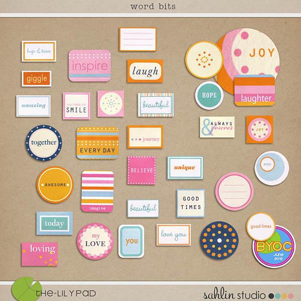 NEW Color Press - Slide Frames - Word Bits Sahlin Studio