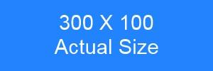 300x100 Banner size
