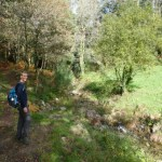 Forest hike in Combarro