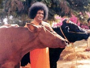 Photo of Sathya Sai Baba
