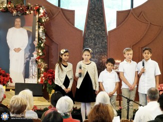 usa-christmas-in-southern-california-region-8-dsc06798-copy