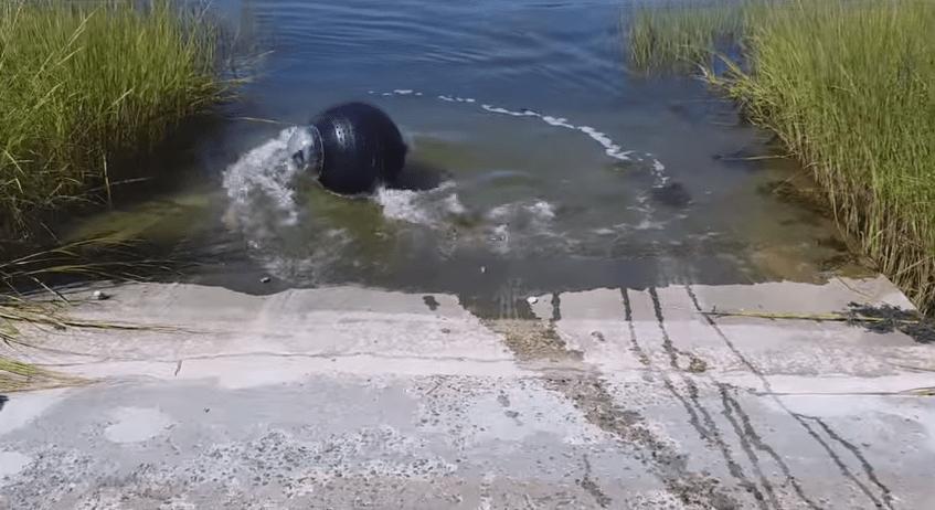 2GuardBot swimming   YouTube