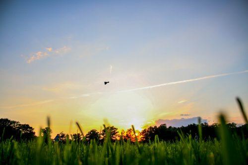 sundown-throw