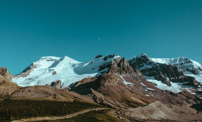 pf-landscape4