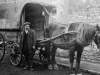 100year ago men fined horse cruelty