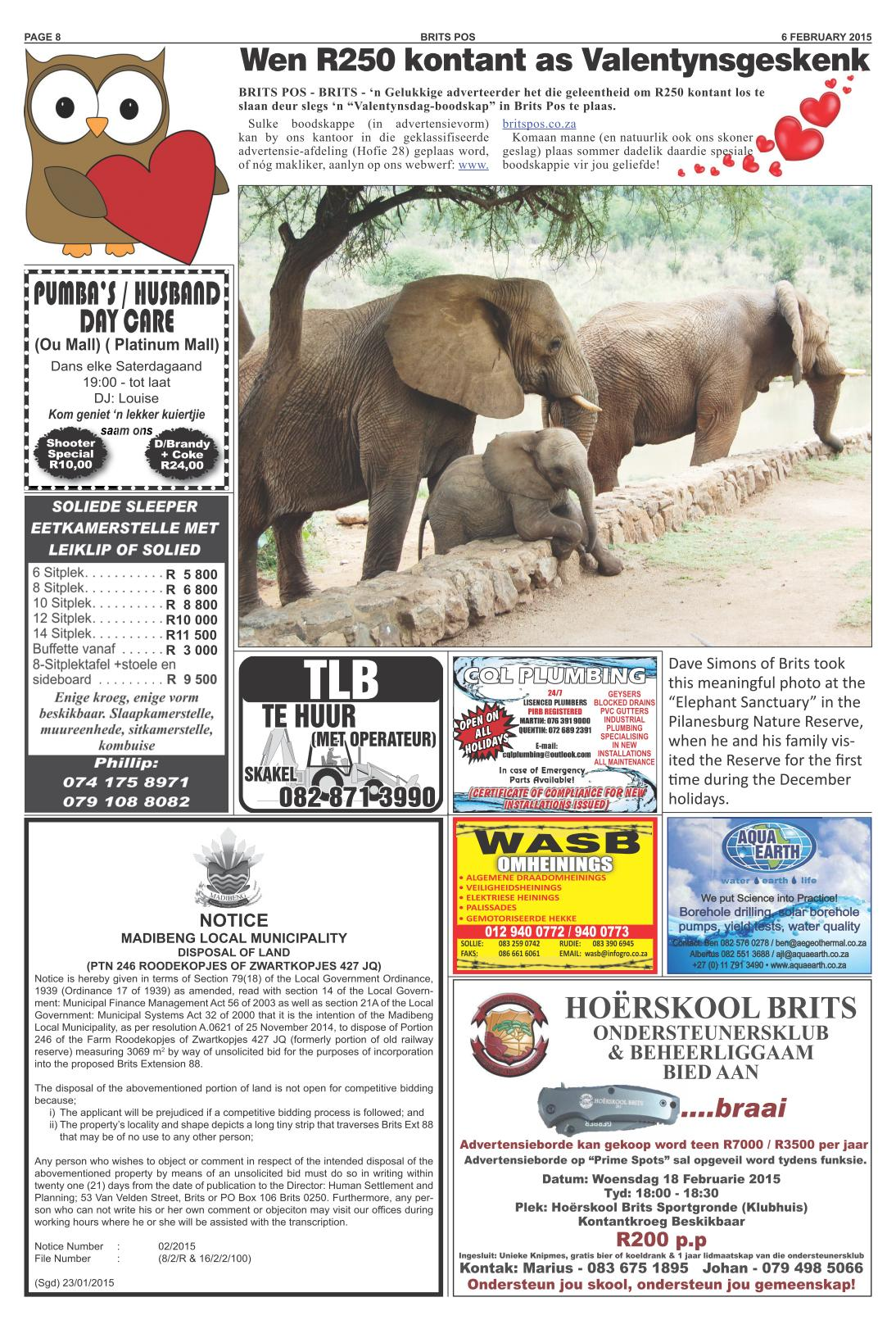 Elephant Deur Salocalnewspapers Co Za Newspapers Britspos