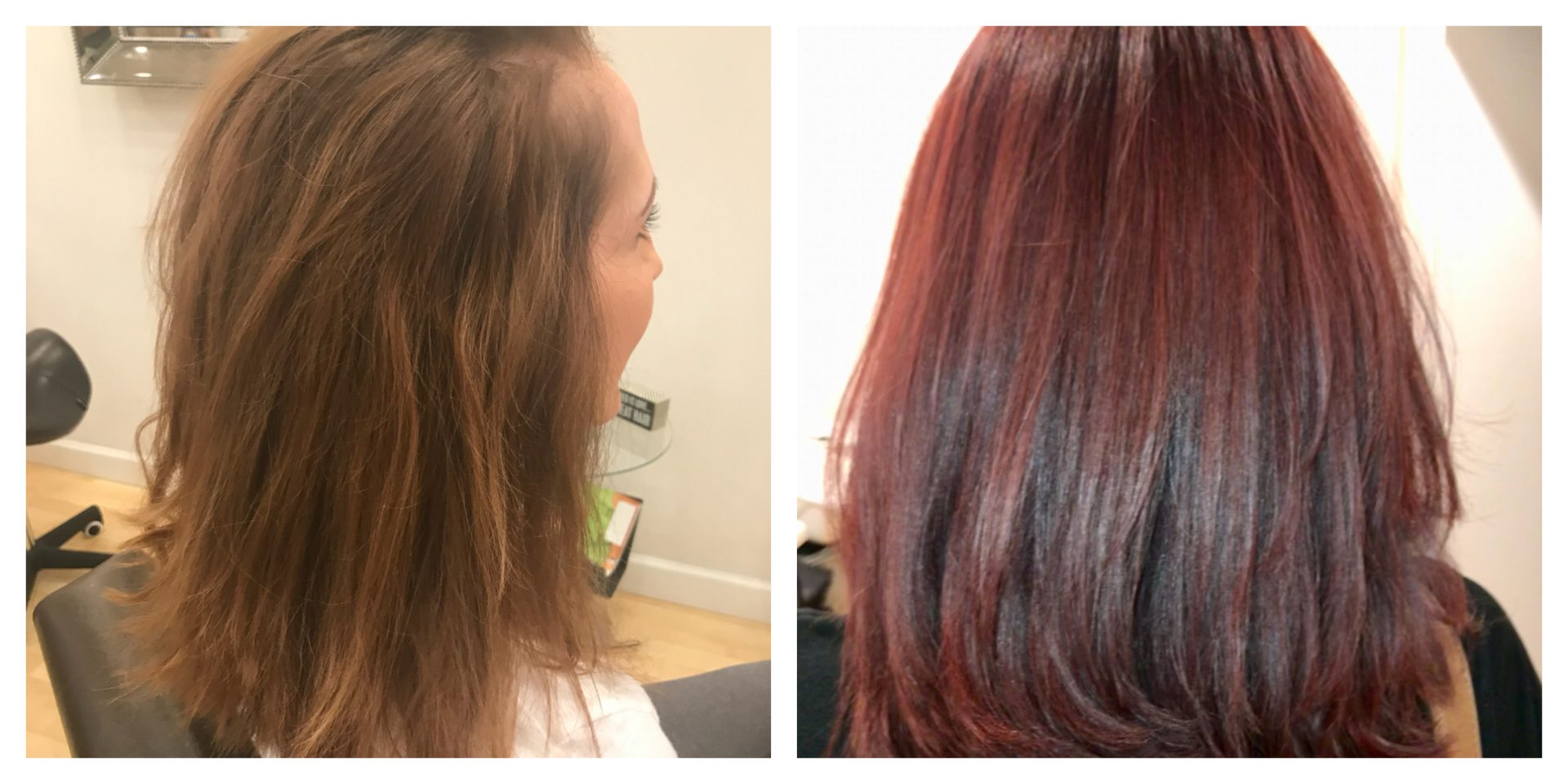 Colors In Trend Archives Salon Mulberry