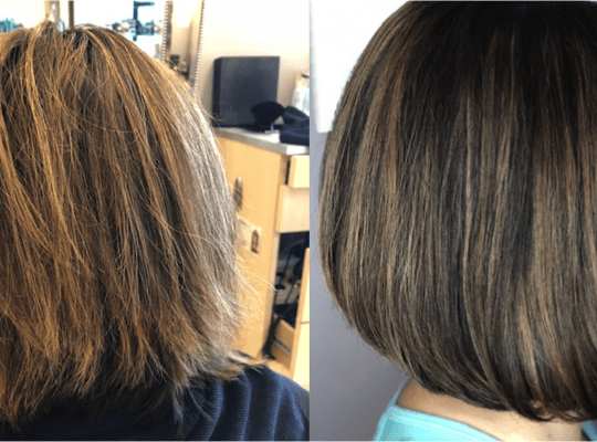 Shadow Root / Lowlight Balayage / Cut / Blowdry