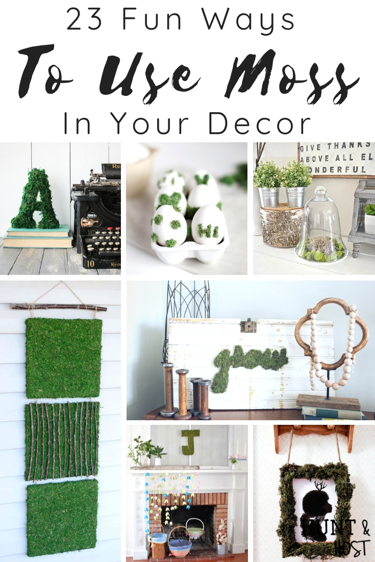 Fun Ways To Use Moss In Your Decor Salvaged Living