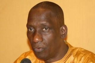 CRISE DE LA SÉNÉGAMBIE : Un peuple, deux États, par Mamadou Diop Decroix