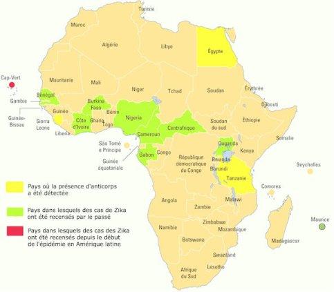 afrique-zika