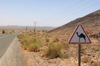 La route vers Erfoud dans le Sud du Maroc en juin 2013. © Giovanna Dell'Orto/AP/SIPA