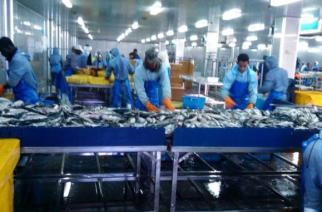 Mauritanie : Une industrie en difficultés