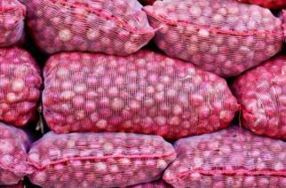 AUDIO – Reprise des importations d'oignons au Sénégal