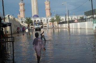 Gestion des inondations à Touba : ADEL déplore la passivité de l'équipe municipale et interpelle l'État