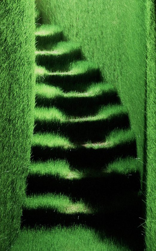 tirage-photo-herbe-10-522x840