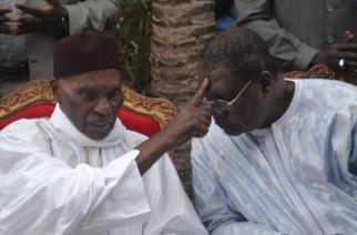 Pape Samba Mboup défend Wade : «Ousmane Ngom est un ingrat, Fayoul nar bi khoromame»