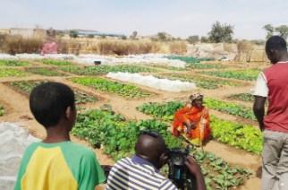 Réalisation des infrastructures hydrauliques à Bakel : La valorisation de l'excédent d'eau booste l'économie locale de 2 villages