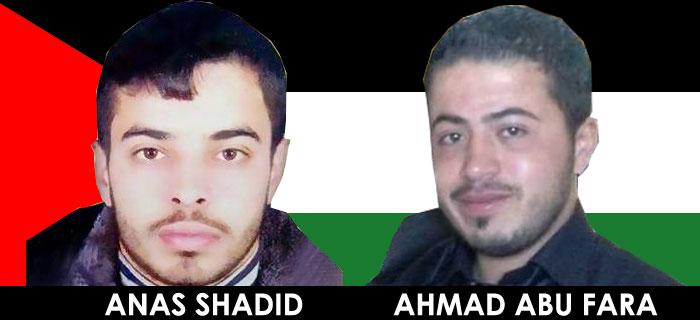 shadid-abufara