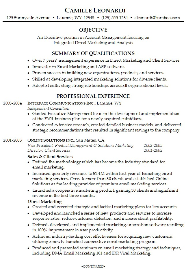 resume summary example objective professional experience samples - sample summary for resume