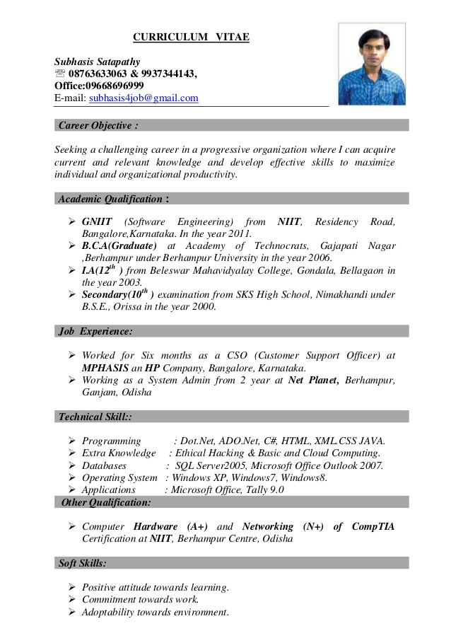 best resume curriculum vitae best resume examples - best it resumes examples