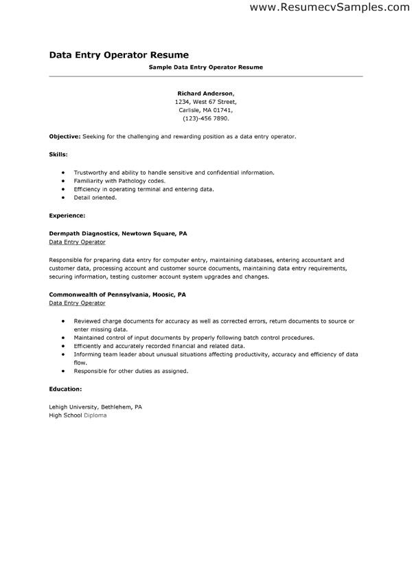 resume description for data entry