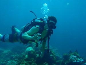 Scuba Diving Koh Phi Phi