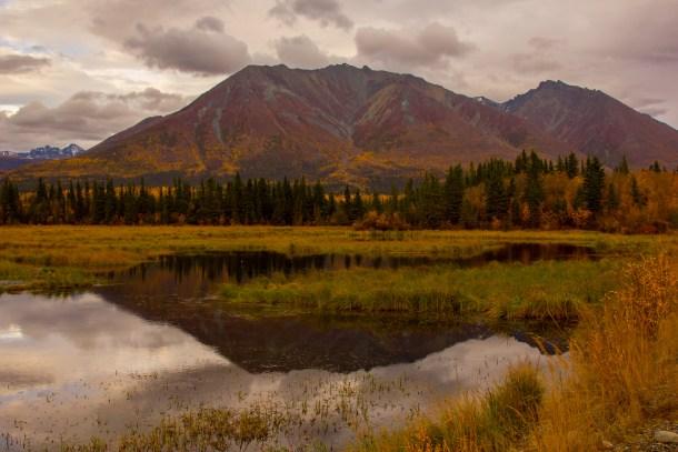 Autumn views of Wrangell St Elias National Park - McCarthy Road