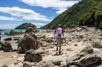 Taupo Point Walk