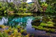 Te Waikoropupū Springs
