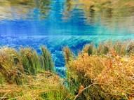 Pupu Springs Clear Water