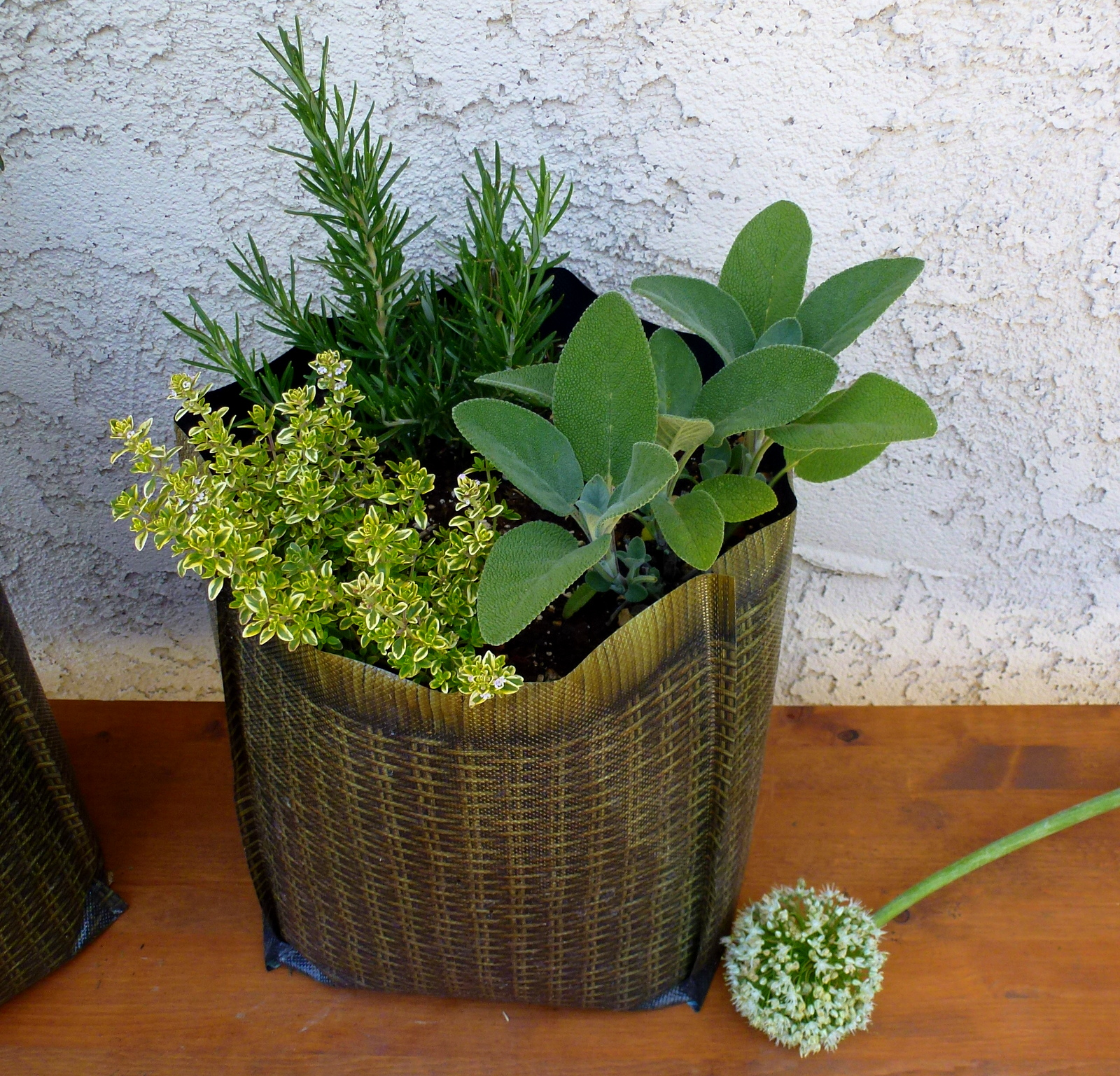 Planter For Herbs Herb Garden In A Hula Sanctuary Soil