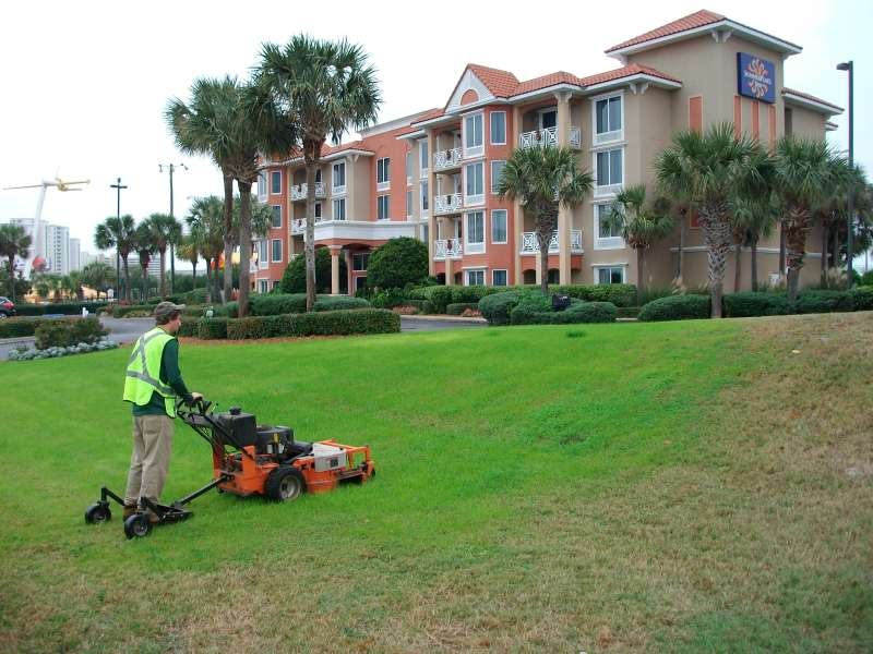 Landscaping Companies Near Me Landscaping Services Near Me In Pauma Valley