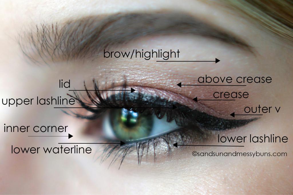 applying eye makeup diagram here is the diagram of the eye
