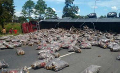 Un camión cargado con papas volcó en la autopista Rosario Santa Fe
