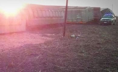 Un tren descarriló y perdió parte de su carga en Centeno