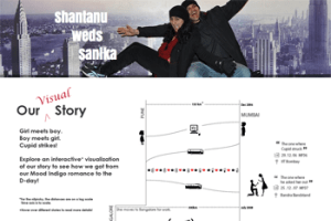 Wedding Story Infographic