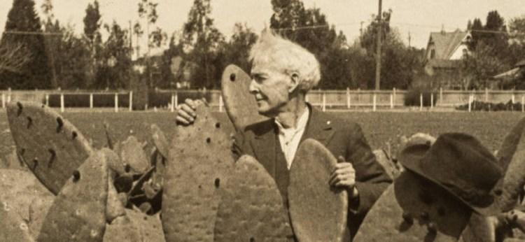 1923burbankcactus