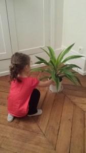 nature enfants amie plante