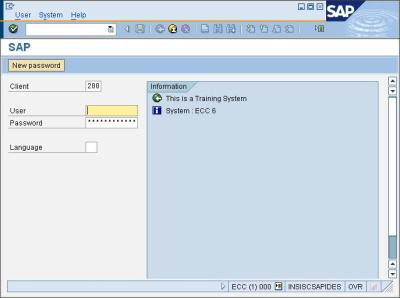 Introduction to SAP – Sap Security Pages