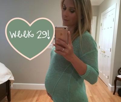 Pregnancy Update Week 29