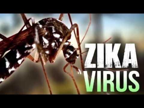 Baby Moon Ideas for 2018 | Zika Free