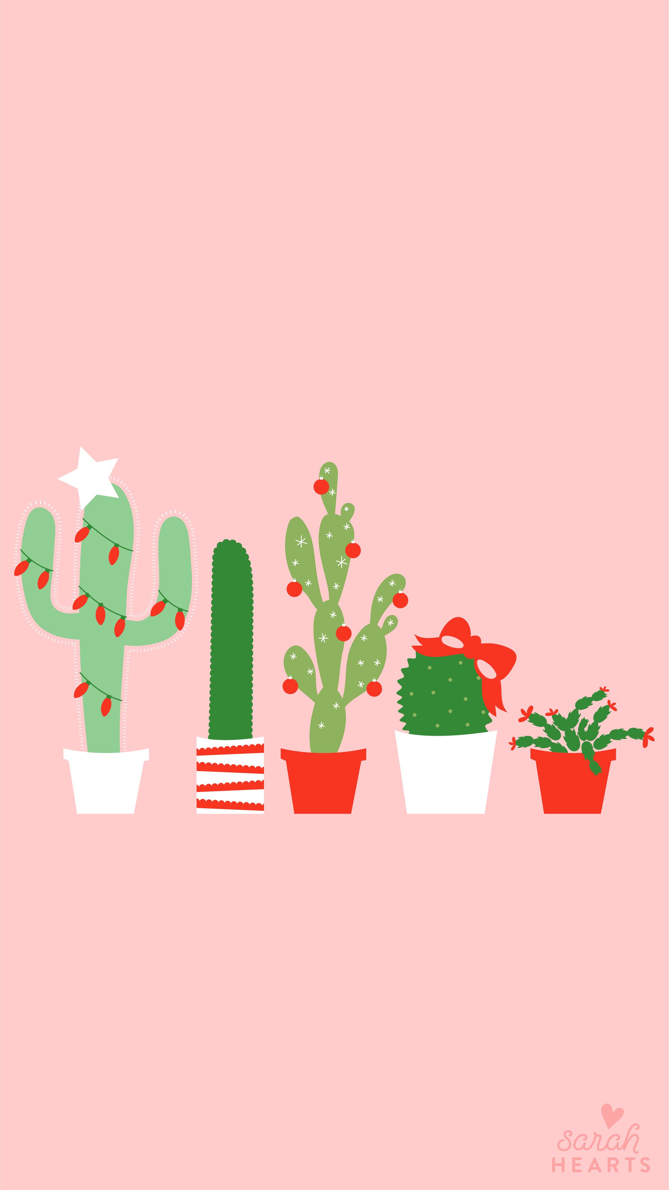 Wallpaper Hd For Desktop Full Screen Cute Baby December 2017 Christmas Cactus Calendar Wallpaper Sarah