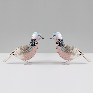 Sarah Louise Matthews 3D Paper Engineered Spotted Dove Birds