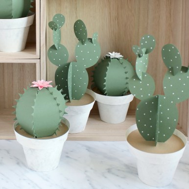 Sarah Louise Matthews 3D Paper Engineered Cacti Cactus Pots