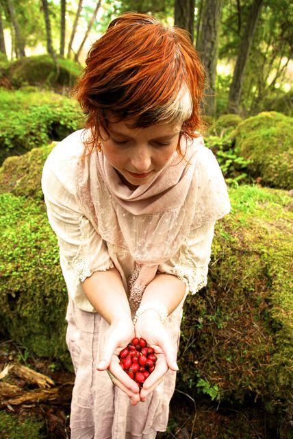 rose hip offering