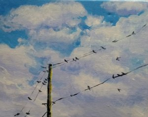 birds_on_a _wire