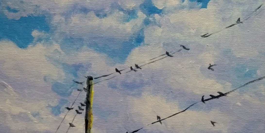 Swallows in summer