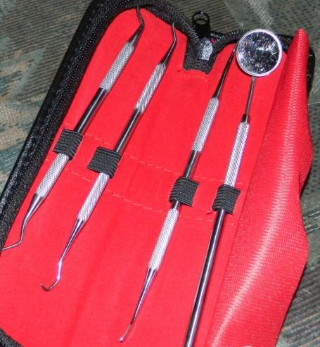 Dental Tools Kit